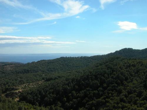 Ibiza-Bilder_66