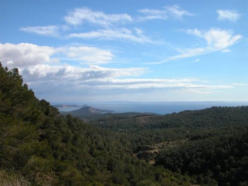Ibiza-Bilder_70