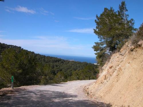 Ibiza-Bilder_72