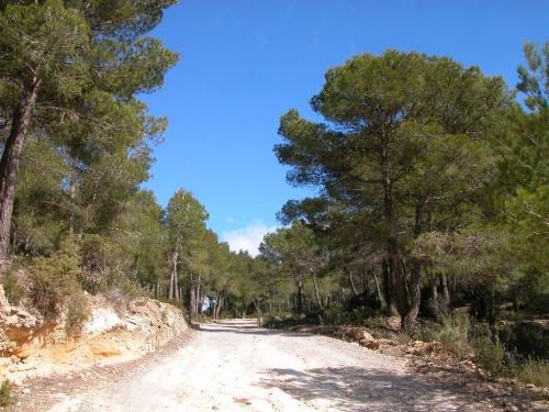 Ibiza-Bilder_75