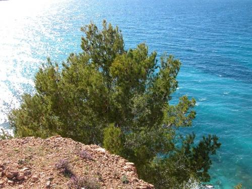 Ibiza-Bilder_84