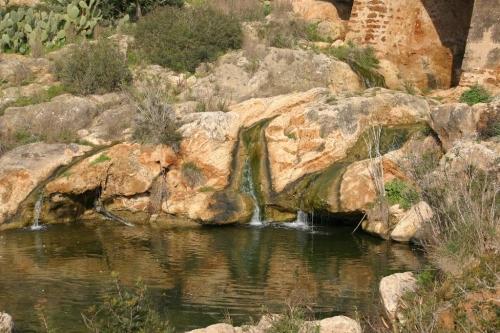 Ibiza-Bilder_95